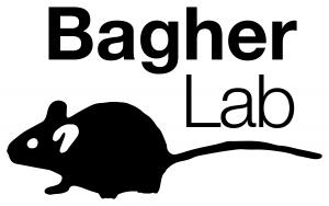 Bagher Lab Logo
