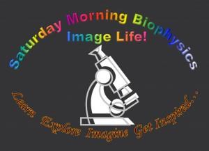 Biophysics Image Life